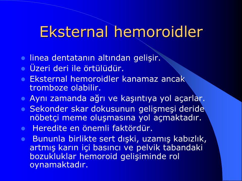 Eksternal hemoroidler linea dentatanın altından gelişir. Üzeri deri ile örtülüdür. Eksternal hemoroidler kanamaz ancak tromboze olabilir. Aynı zamanda