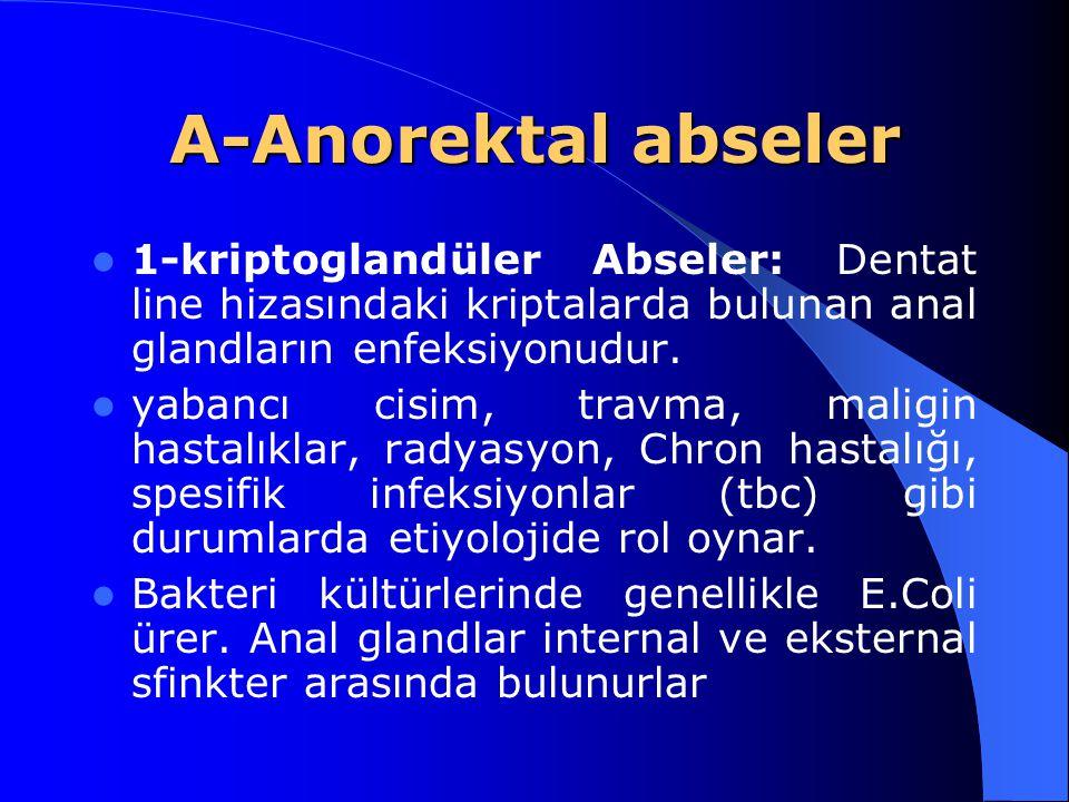 A-Anorektal abseler 1-kriptoglandüler Abseler: Dentat line hizasındaki kriptalarda bulunan anal glandların enfeksiyonudur. yabancı cisim, travma, mali
