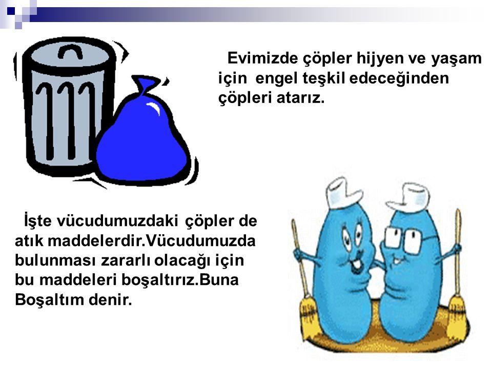Evimizde çöpler hijyen ve yaşam için engel teşkil edeceğinden çöpleri atarız. İşte vücudumuzdaki çöpler de atık maddelerdir.Vücudumuzda bulunması zara