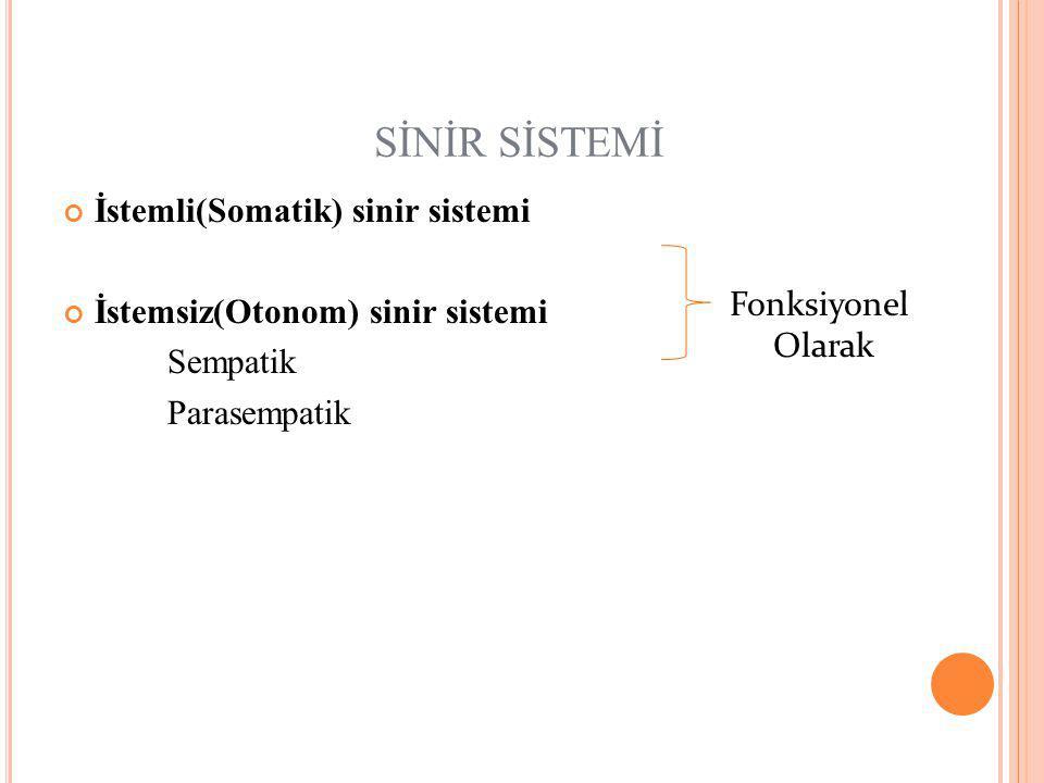 SİNİR SİSTEMİ İstemli(Somatik) sinir sistemi İstemsiz(Otonom) sinir sistemi Sempatik Parasempatik Fonksiyonel Olarak