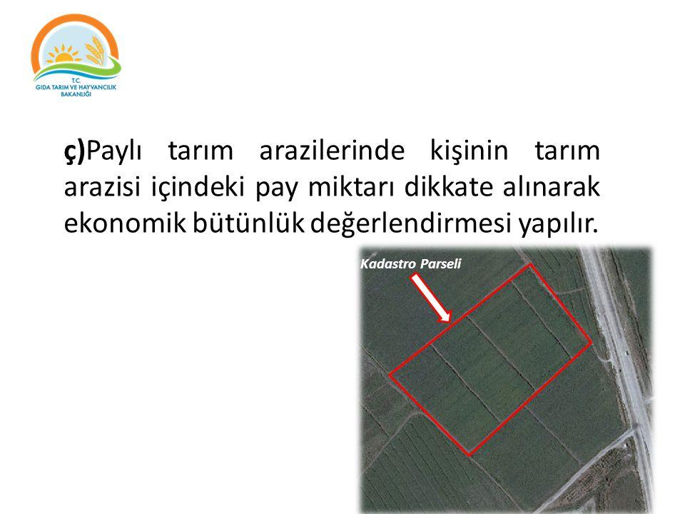 ç)Paylı tarım arazilerinde kişinin tarım arazisi içindeki pay miktarı dikkate alınarak ekonomik bütünlük değerlendirmesi yapılır. Kadastro Parseli