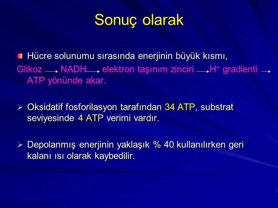 Sonuç olarak Hücre solunumu sırasında enerjinin büyük kısmı, Glikoz NADH elektron taşınım zinciri H + gradienti ATP yönünde akar.  Oksidatif fosforil
