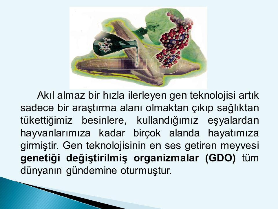  Genetiği değiştirilmiş organizmalar (GDO), organizmanın gen diziliminin değiştirilmesi ya da gen aktarımı ile kendi doğasında bulunmayan bir özellik kazandırılmasıyla oluşan ürünlerdir.