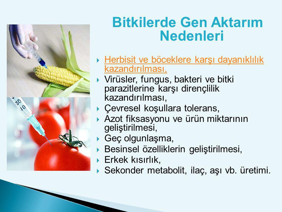 Geliştirilmekte olan bazı GDG'ler: Hepatit B gibi bulaşıcı hastalıklara karşı insan aşıları içeren muzlar, Normal olgunlaşma sürecinden hızlı gelişen balıklar, Erken ürün veren çeşitli meyve ve sebze türleridir.
