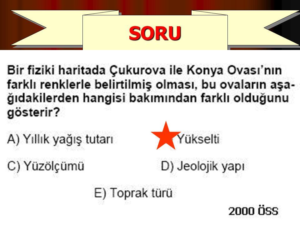 SORUSORU
