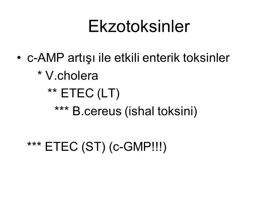 Ekzotoksinler c-AMP artışı ile etkili enterik toksinler * V.cholera ** ETEC (LT) *** B.cereus (ishal toksini) *** ETEC (ST) (c-GMP!!!)