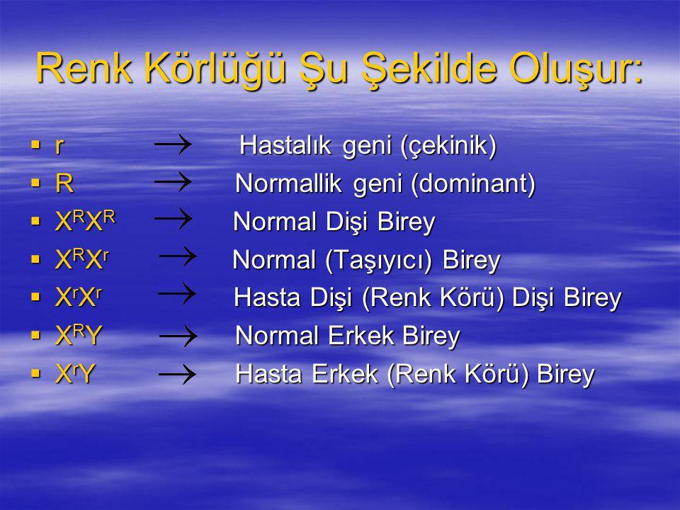 Renk Körlüğü Şu Şekilde Oluşur:  r Hastalık geni (çekinik)  R Normallik geni (dominant)  X R X R Normal Dişi Birey  X R X r Normal (Taşıyıcı) Bire