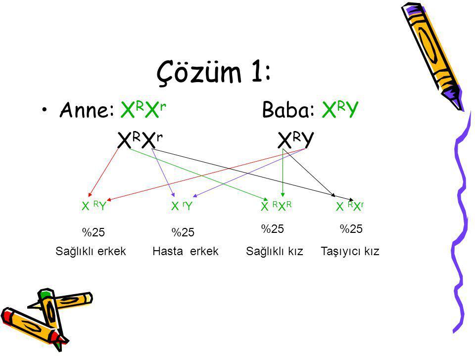 Çözüm 1: Anne: X R X r Baba: X R Y X R X r X R Y X R YX r Y X R X r X R %25 Sağlıklı erkekHasta erkekSağlıklı kızTaşıyıcı kız