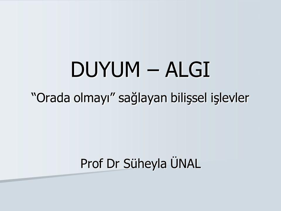 """DUYUM – ALGI """"Orada olmayı"""" sağlayan bilişsel işlevler Prof Dr Süheyla ÜNAL"""
