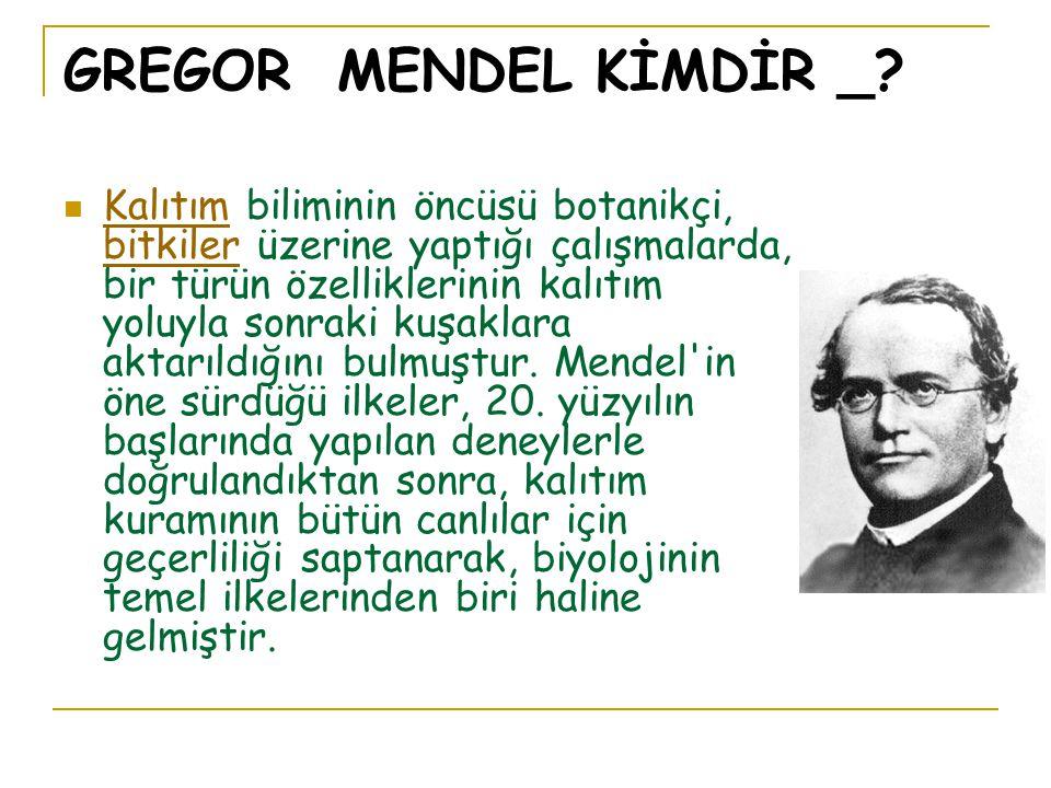 GREGOR MENDEL KİMDİR _.