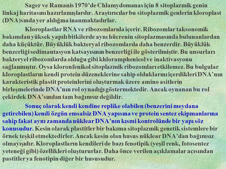 Sager ve Ramanis 1970'de Chlamydomanas için 8 sitoplazmik genin linkaj haritasını hazırlamışlardır.