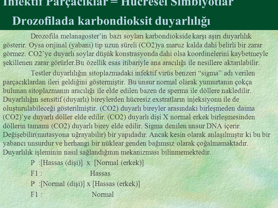 İnfektif Parçacıklar = Hücresel Simbiyotlar Drozofilada karbondioksit duyarlılığı Drozofila melanagoster'in bazı soyları karbondiokside karşı aşırı duyarlılık gösterir.