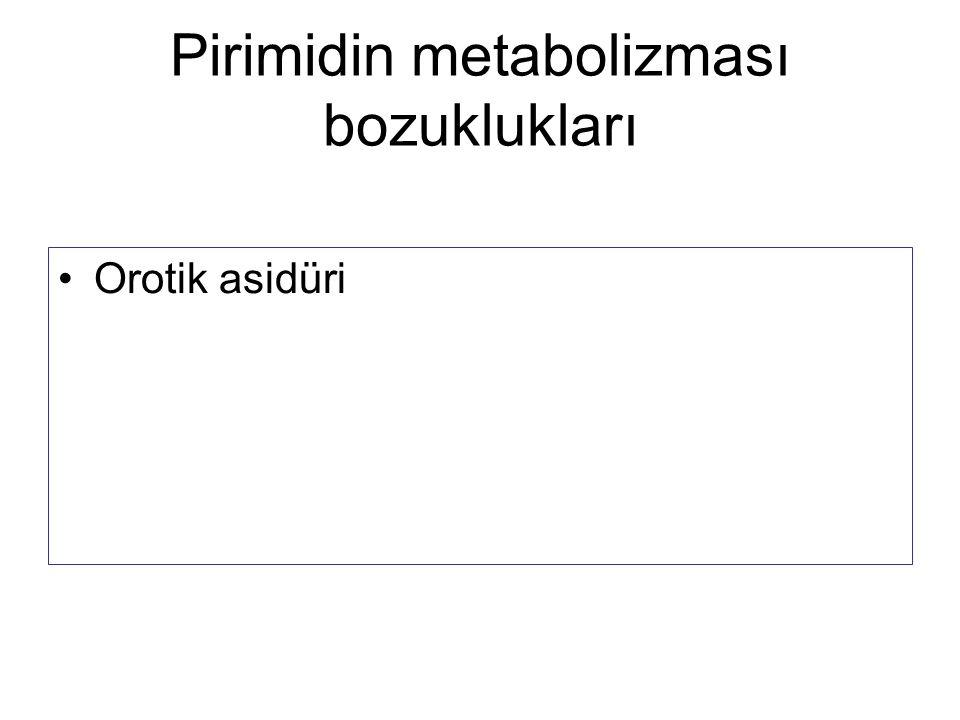 Pirimidin metabolizması bozuklukları Orotik asidüri