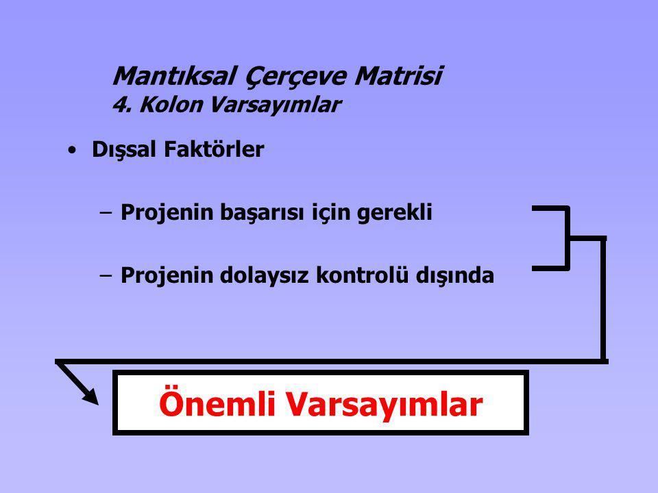 Dışsal Faktörler –Projenin başarısı için gerekli –Projenin dolaysız kontrolü dışında Önemli Varsayımlar Mantıksal Çerçeve Matrisi 4. Kolon Varsayımlar