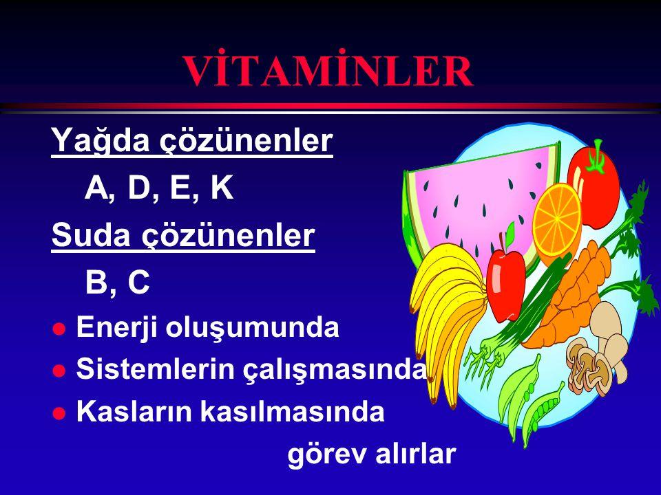 """PROTEİNLER l Büyüme ve gelişme l Doku onarımı ve yapımı l Kan proteini """"hemoglobin"""" yapımı l Enzim ve hormon yapımı"""