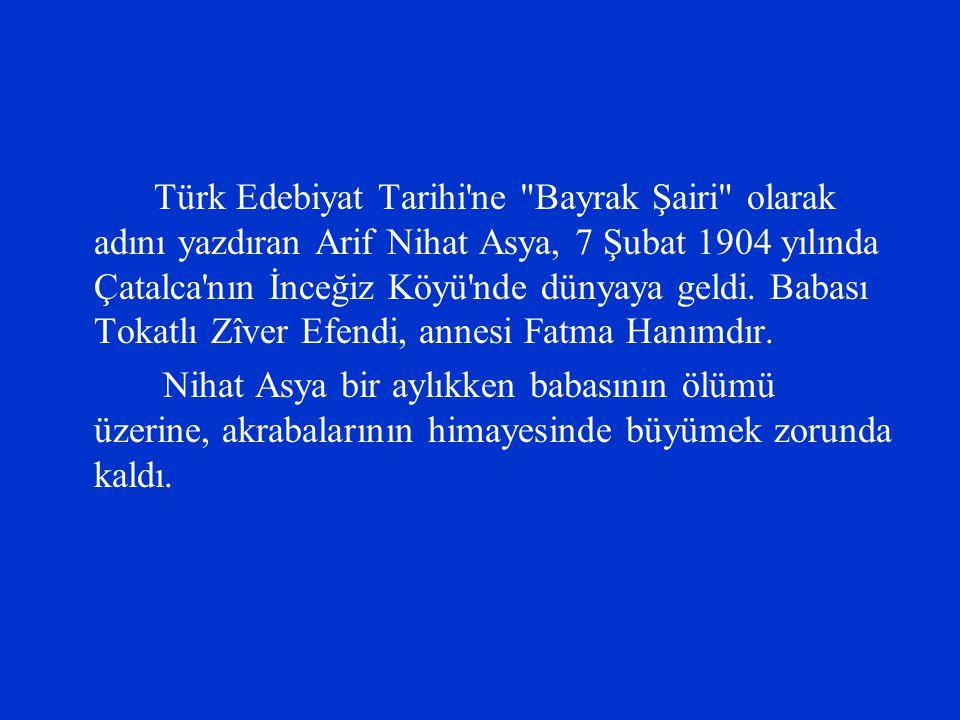 Türk Edebiyat Tarihi'ne