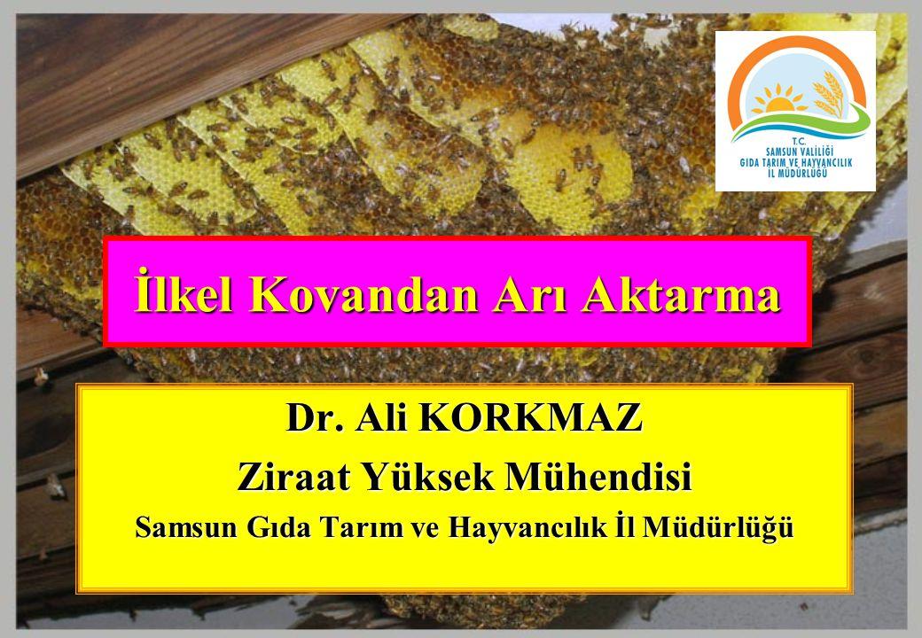 İlkel Kovandan Arı Aktarma Dr. Ali KORKMAZ Ziraat Yüksek Mühendisi Samsun Gıda Tarım ve Hayvancılık İl Müdürlüğü