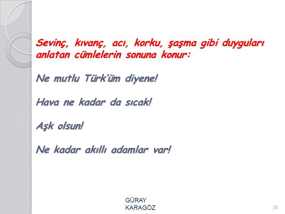 Sevinç, kıvanç, acı, korku, şaşma gibi duyguları anlatan cümlelerin sonuna konur: Ne mutlu Türk'üm diyene! Hava ne kadar da sıcak! Aşk olsun! Ne kadar