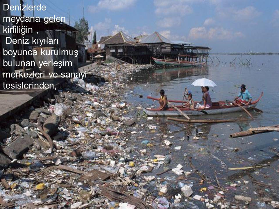 Deniz kirliliğinin küresel ısınmanın ana nedeni olduğunu biliyor muydunuz ?
