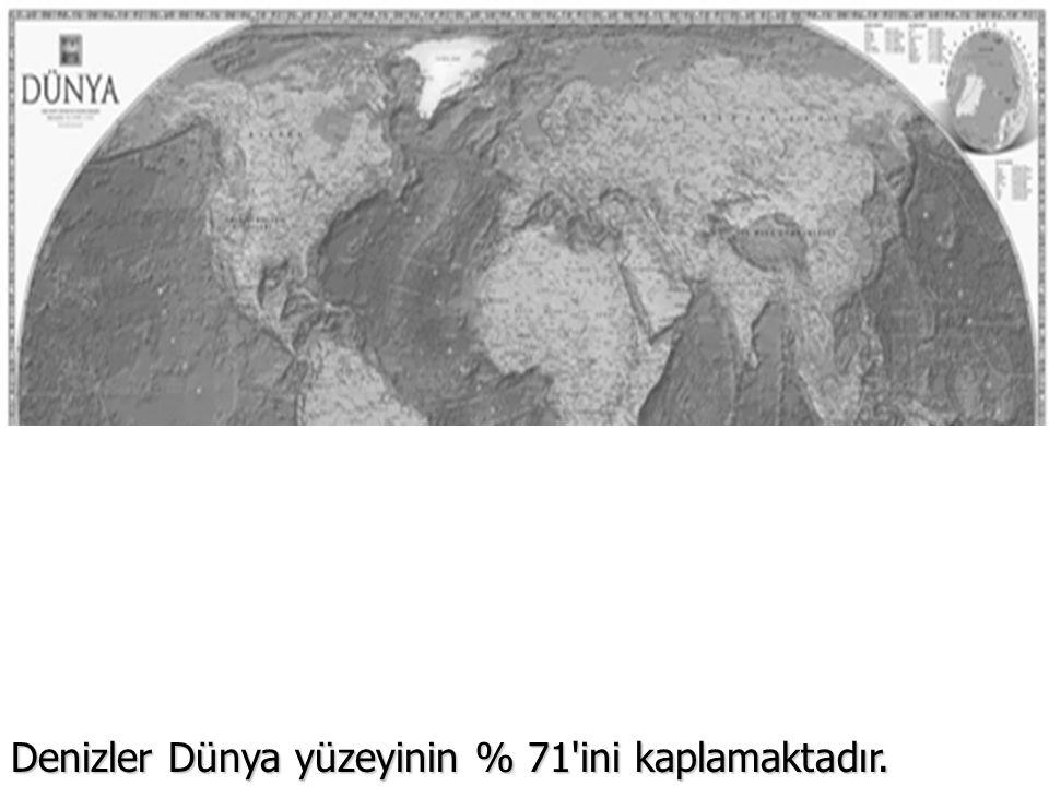 Denizler Dünya yüzeyinin % 71'ini kaplamaktadır.