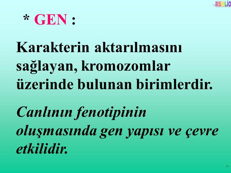 11 * GEN : Karakterin aktarılmasını sağlayan, kromozomlar üzerinde bulunan birimlerdir. Canlının fenotipinin oluşmasında gen yapısı ve çevre etkilidir