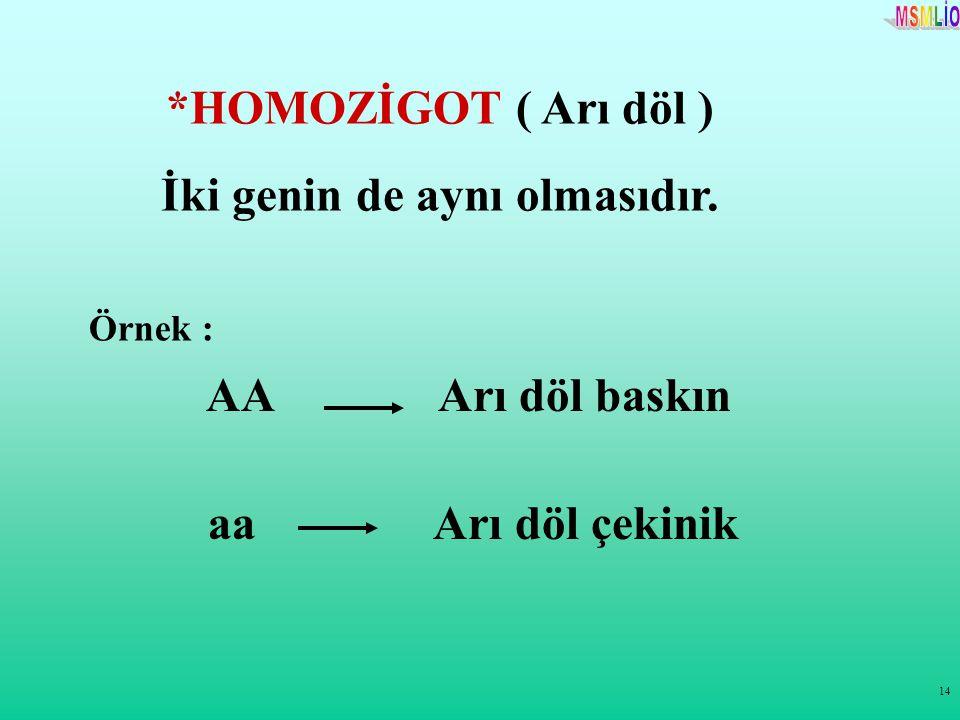 14 *HOMOZİGOT ( Arı döl ) İki genin de aynı olmasıdır. Örnek : AA Arı döl baskın aa Arı döl çekinik