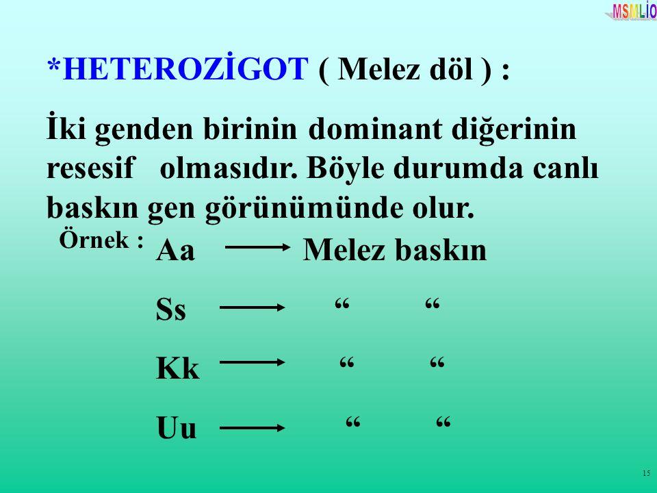 15 *HETEROZİGOT ( Melez döl ) : İki genden birinin dominant diğerinin resesif olmasıdır. Böyle durumda canlı baskın gen görünümünde olur. Örnek : Aa M