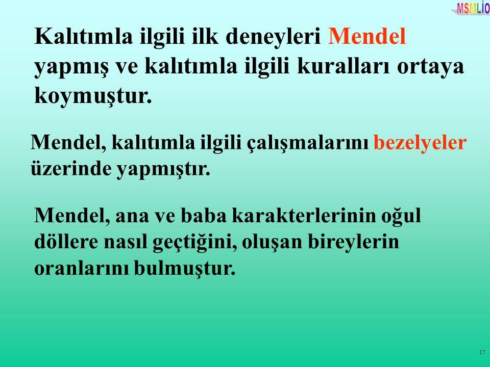 17 Kalıtımla ilgili ilk deneyleri Mendel yapmış ve kalıtımla ilgili kuralları ortaya koymuştur. Mendel, kalıtımla ilgili çalışmalarını bezelyeler üzer