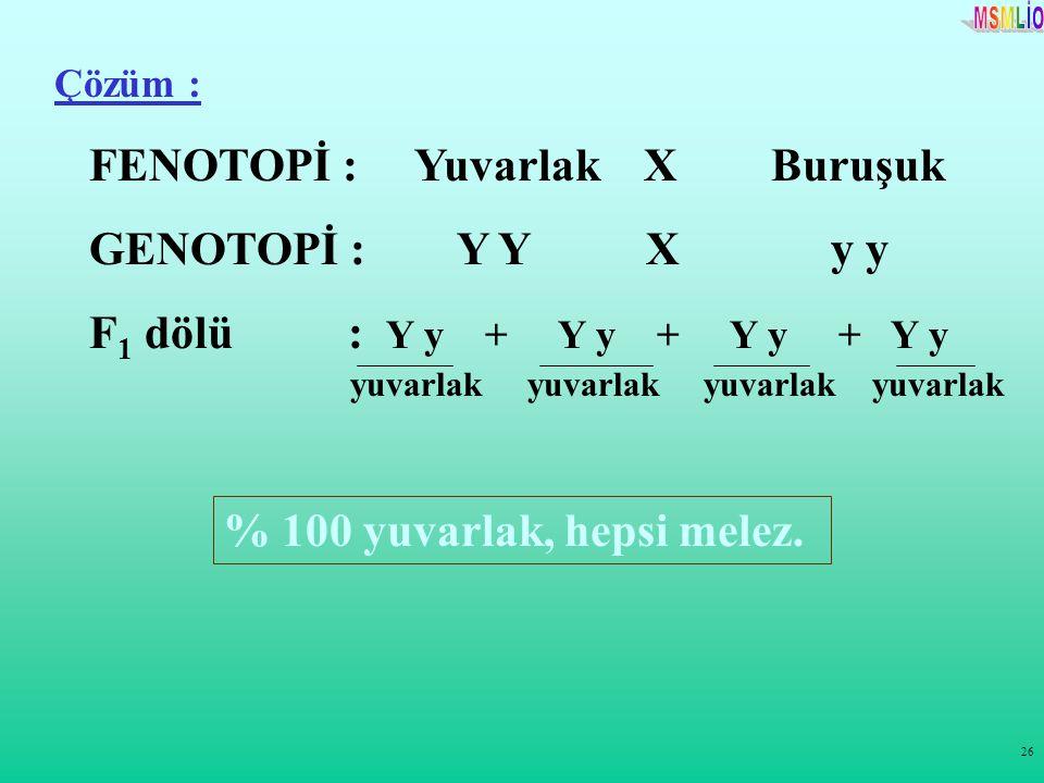26 Çözüm : FENOTOPİ : Yuvarlak X Buruşuk GENOTOPİ : Y Y X y y F 1 dölü : Y y + Y y + Y y + Y y % 100 yuvarlak, hepsi melez. yuvarlak yuvarlak