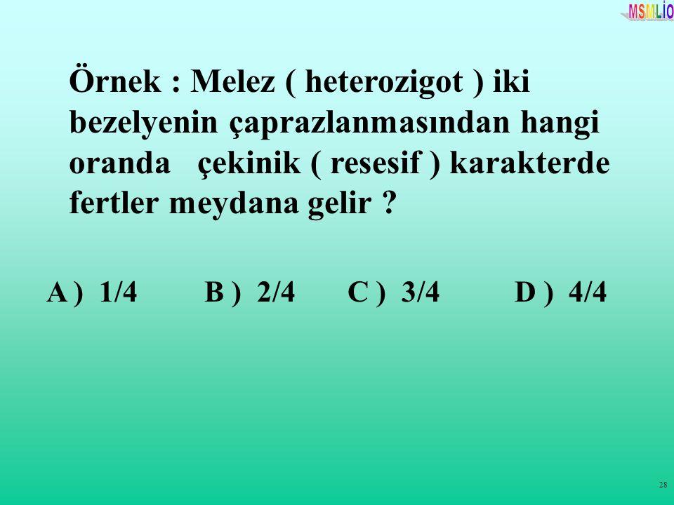 28 Örnek : Melez ( heterozigot ) iki bezelyenin çaprazlanmasından hangi oranda çekinik ( resesif ) karakterde fertler meydana gelir ? A ) 1/4 B ) 2/4