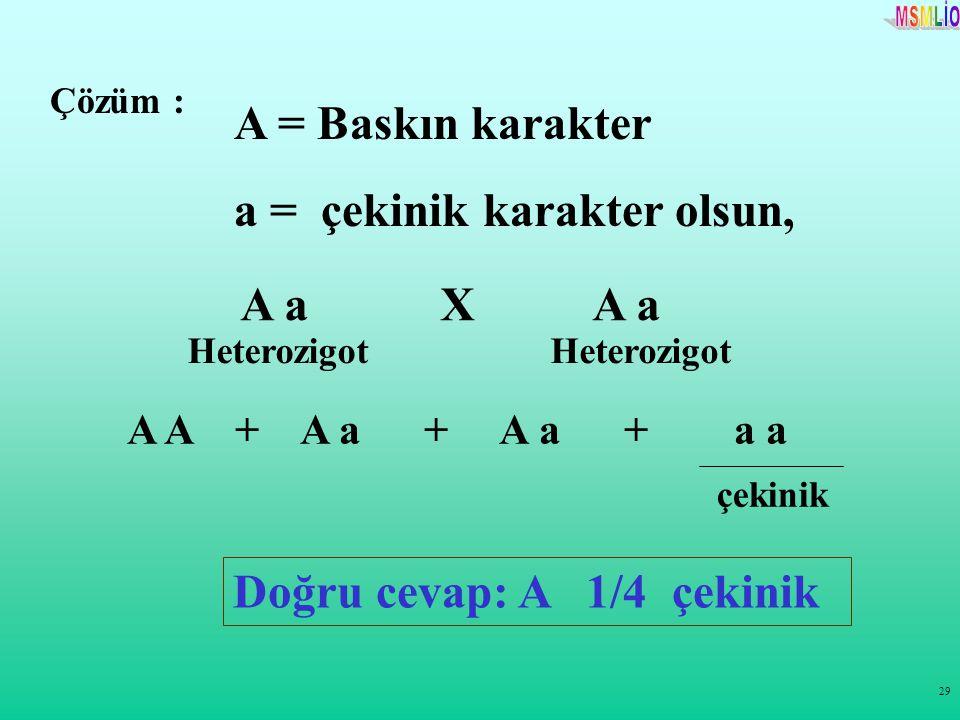 29 Çözüm : A = Baskın karakter a = çekinik karakter olsun, A a X A a A A + A a + A a + a a çekinik Doğru cevap: A 1/4 çekinik Heterozigot