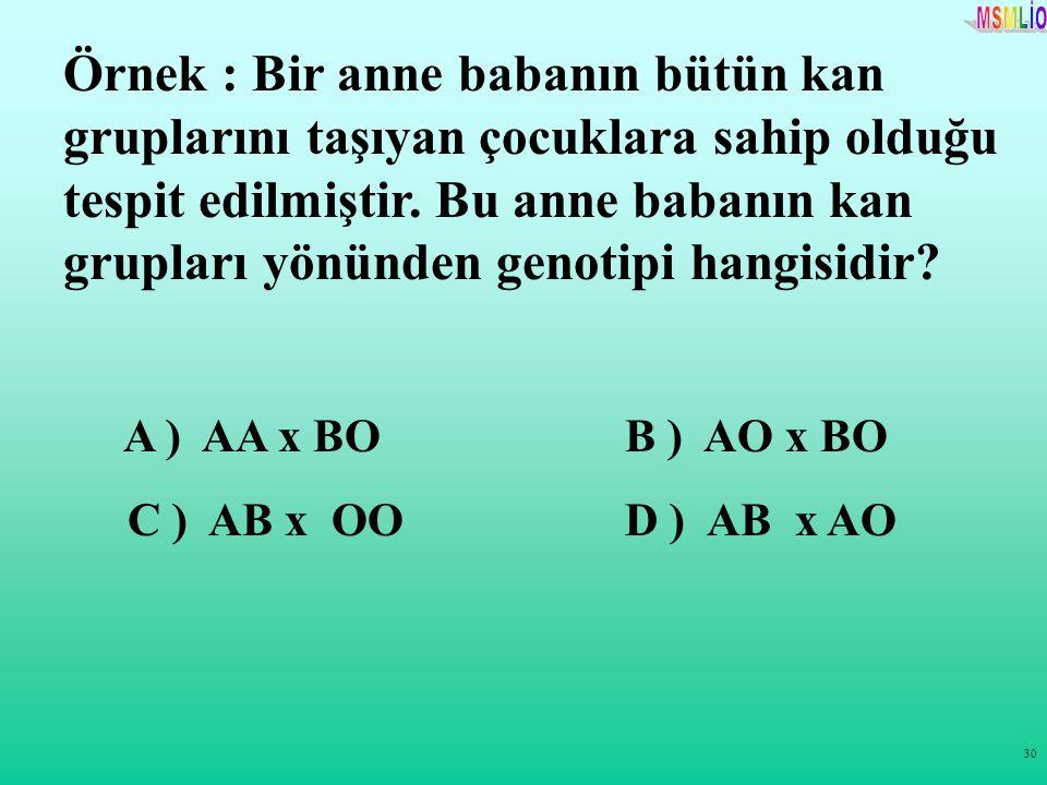 30 Örnek : Bir anne babanın bütün kan gruplarını taşıyan çocuklara sahip olduğu tespit edilmiştir. Bu anne babanın kan grupları yönünden genotipi hang
