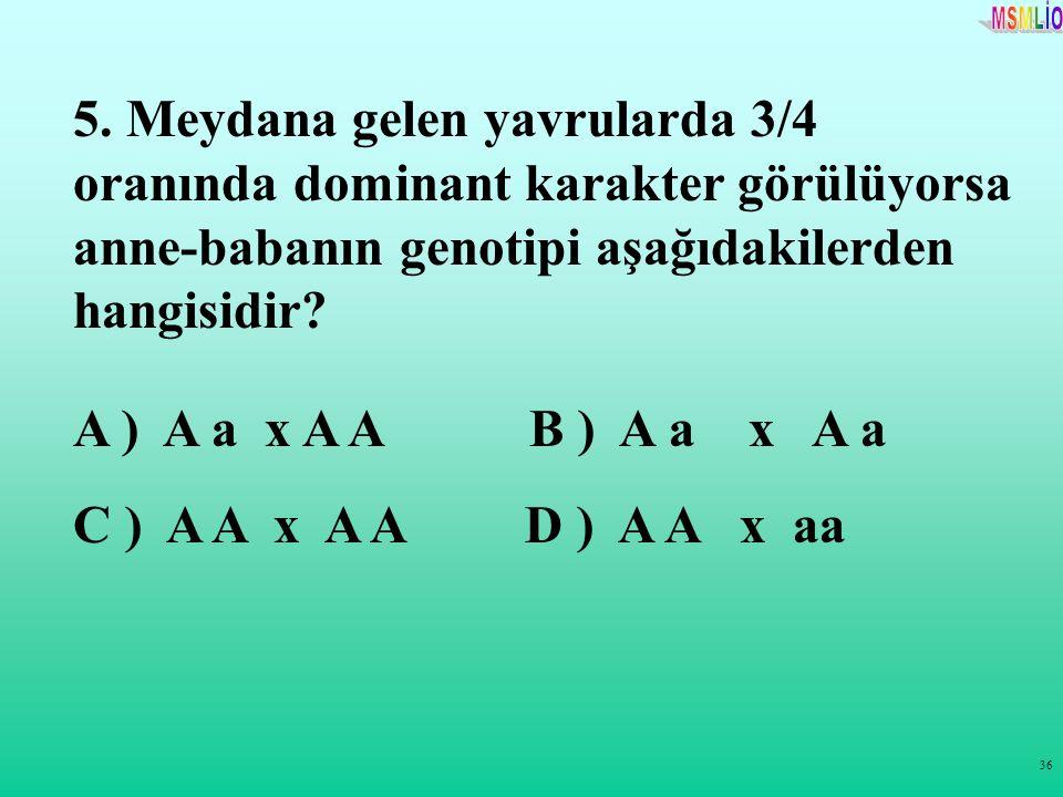 36 5. Meydana gelen yavrularda 3/4 oranında dominant karakter görülüyorsa anne-babanın genotipi aşağıdakilerden hangisidir? A ) A a x A A B ) A a x A