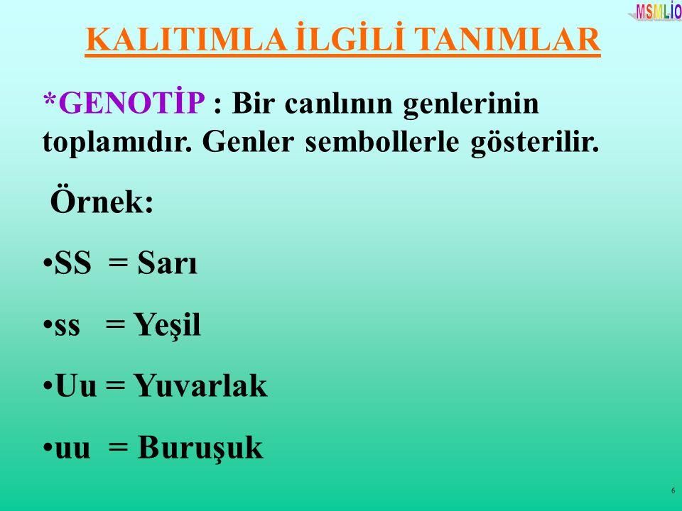 6 KALITIMLA İLGİLİ TANIMLAR *GENOTİP : Bir canlının genlerinin toplamıdır. Genler sembollerle gösterilir. Örnek: SS = Sarı ss = Yeşil Uu = Yuvarlak uu