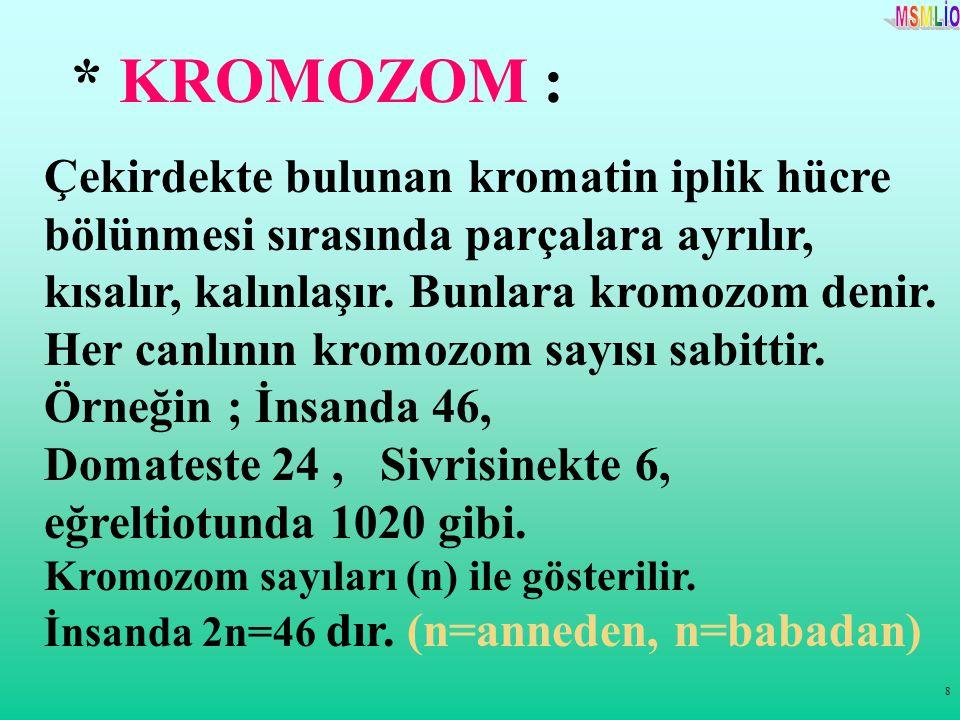 8 * KROMOZOM : Çekirdekte bulunan kromatin iplik hücre bölünmesi sırasında parçalara ayrılır, kısalır, kalınlaşır. Bunlara kromozom denir. Her canlını
