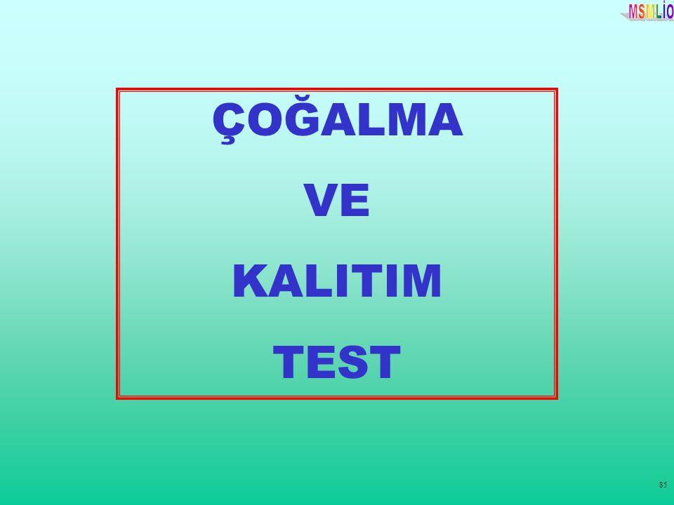 85 ÇOĞALMA VE KALITIM TEST