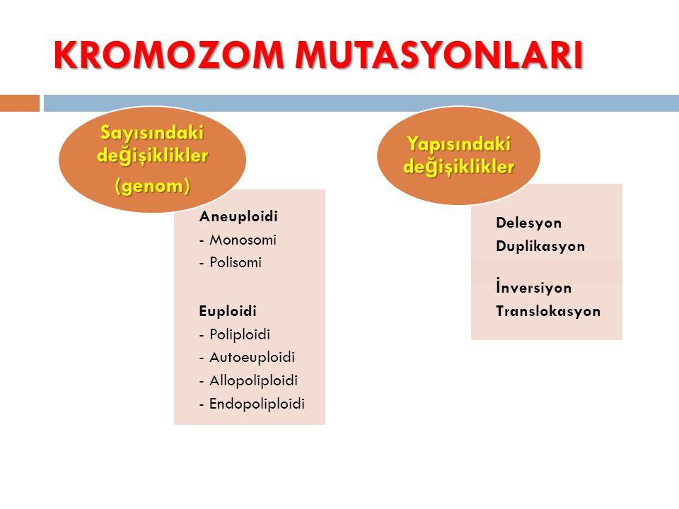 KROMOZOM MUTASYONLARI Aneuploidi - Monosomi - Polisomi Euploidi - Poliploidi - Autoeuploidi - Allopoliploidi - Endopoliploidi Sayısındaki değişiklikle