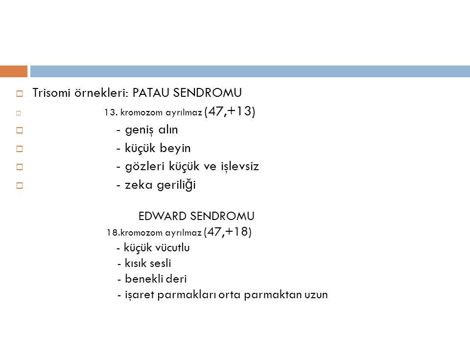  Trisomi örnekleri: PATAU SENDROMU  13. kromozom ayrılmaz (47,+13)  - geniş alın  - küçük beyin  - gözleri küçük ve işlevsiz  - zeka gerili ğ i