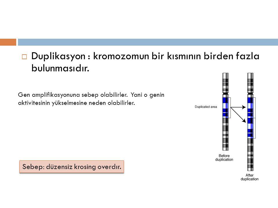  Duplikasyon : kromozomun bir kısmının birden fazla bulunmasıdır. Sebep: düzensiz krosing overdır. Gen amplifikasyonuna sebep olabilirler. Yani o gen