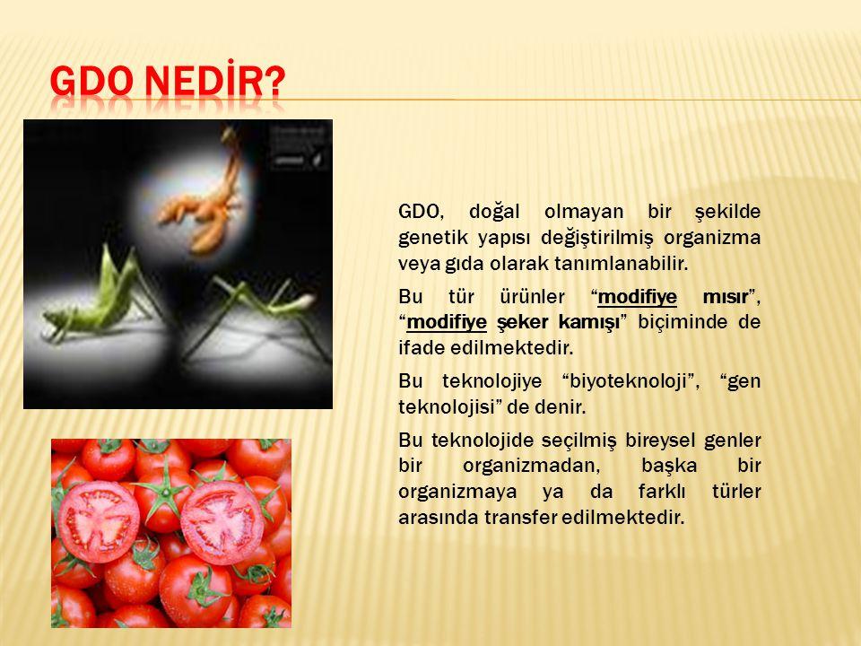 """GDO, doğal olmayan bir şekilde genetik yapısı değiştirilmiş organizma veya gıda olarak tanımlanabilir. Bu tür ürünler """"modifiye mısır"""", """"modifiye şeke"""