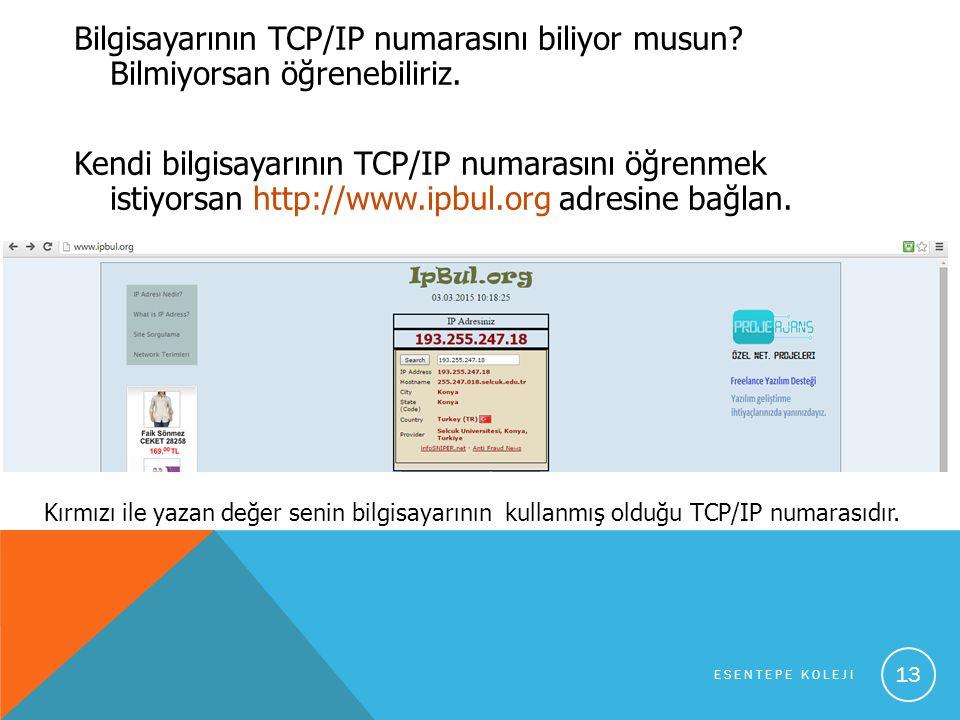 Bilgisayarının TCP/IP numarasını biliyor musun. Bilmiyorsan öğrenebiliriz.