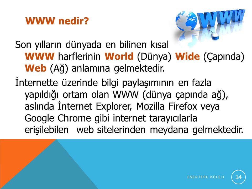 WWW nedir.