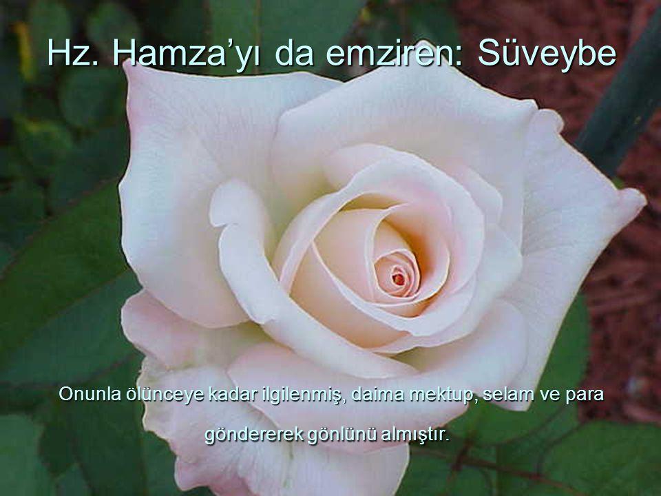 Hz. Hamza'yı da emziren: Süveybe Onunla ölünceye kadar ilgilenmiş, daima mektup, selam ve para göndererek gönlünü almıştır.