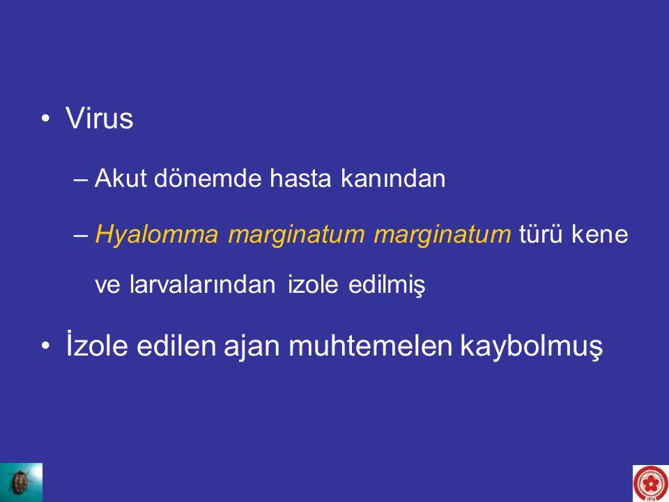 Virus –Akut dönemde hasta kanından –Hyalomma marginatum marginatum türü kene ve larvalarından izole edilmiş İzole edilen ajan muhtemelen kaybolmuş