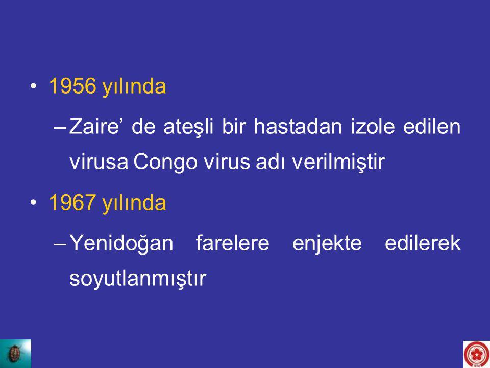 1956 yılında –Zaire' de ateşli bir hastadan izole edilen virusa Congo virus adı verilmiştir 1967 yılında –Yenidoğan farelere enjekte edilerek soyutlan