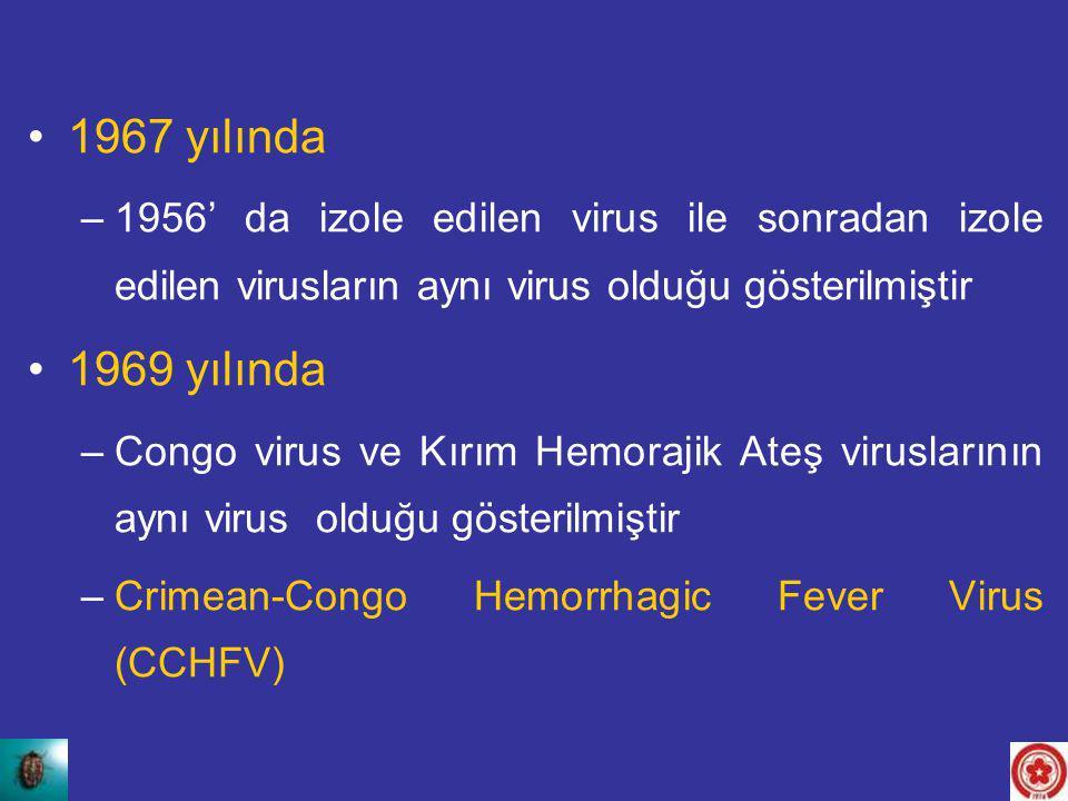 1967 yılında –1956' da izole edilen virus ile sonradan izole edilen virusların aynı virus olduğu gösterilmiştir 1969 yılında –Congo virus ve Kırım Hem