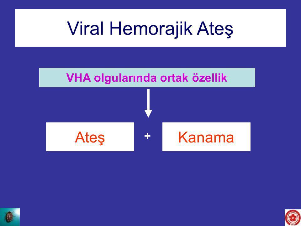 Viral Hemorajik Ateş VHA olgularında ortak özellik AteşKanama +