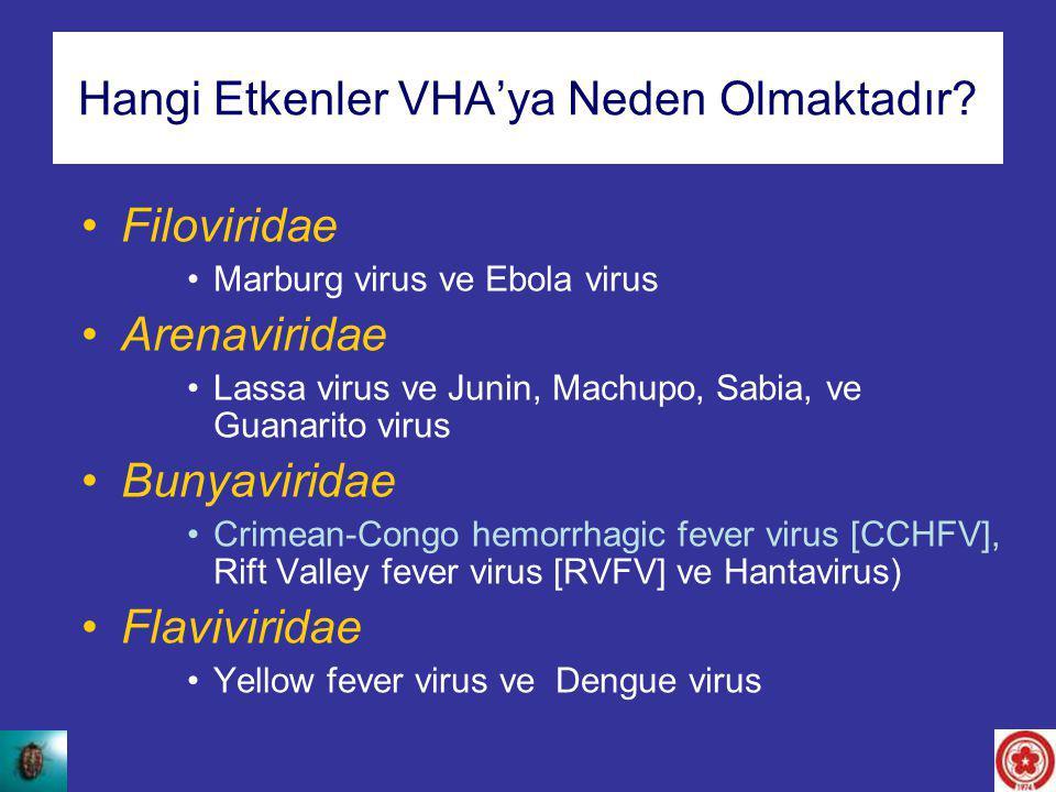 Hangi Etkenler VHA'ya Neden Olmaktadır? Filoviridae Marburg virus ve Ebola virus Arenaviridae Lassa virus ve Junin, Machupo, Sabia, ve Guanarito virus