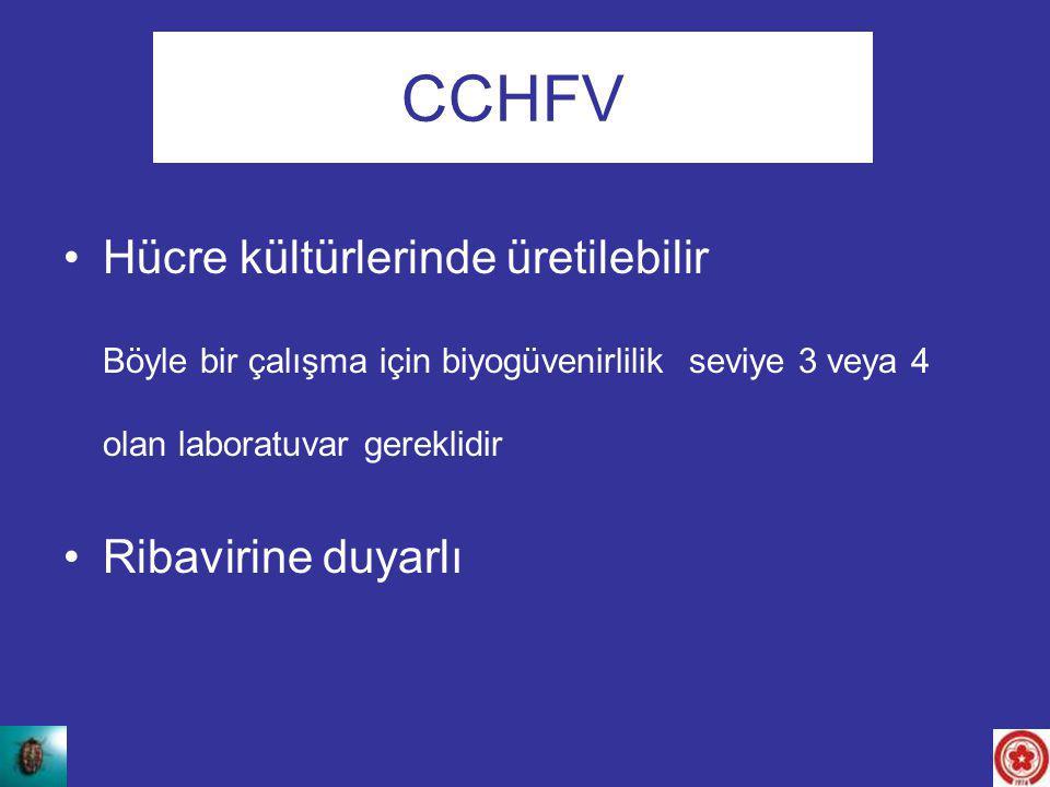 Hücre kültürlerinde üretilebilir Böyle bir çalışma için biyogüvenirlilik seviye 3 veya 4 olan laboratuvar gereklidir Ribavirine duyarlı CCHFV