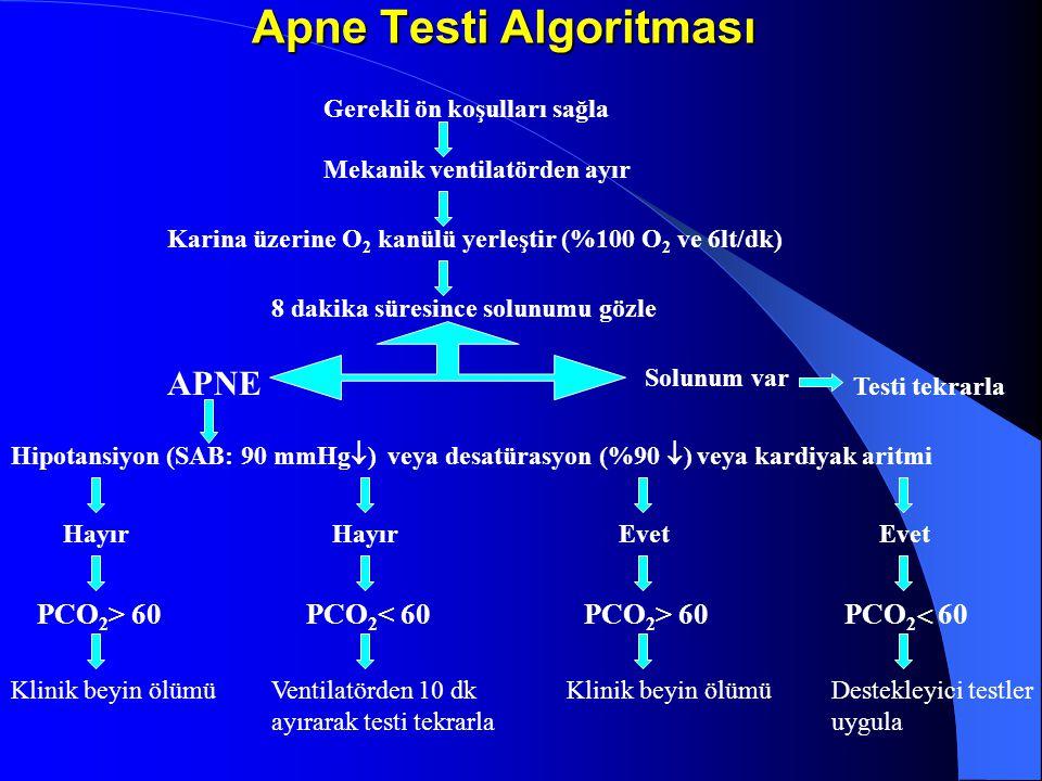 Apne Testi Algoritması Gerekli ön koşulları sağla Mekanik ventilatörden ayır Karina üzerine O 2 kanülü yerleştir (%100 O 2 ve 6lt/dk) 8 dakika süresince solunumu gözle Solunum var Testi tekrarla APNE Hipotansiyon (SAB: 90 mmHg  ) veya desatürasyon (%90  ) veya kardiyak aritmi Hayır Evet PCO 2 > 60 PCO 2 < 60 PCO 2  60 Klinik beyin ölümüVentilatörden 10 dk ayırarak testi tekrarla Klinik beyin ölümüDestekleyici testler uygula